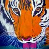 Tijger, Eyes of the Tiger : afm. 50 x 60, 3D